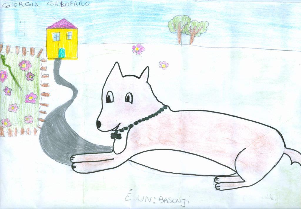 Disegna il tuo cane preferito - Disegna il tuo bagno ...