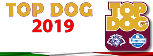 Top Dog 2019 - banner